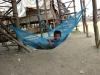 cambogia31