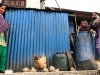 Trekk-Nepal-1010925