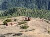 Trekk-Nepal-1020413