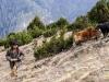 Trekk-Nepal-1020448