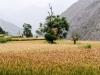 Trekking-Nepal-1040648