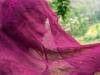 Trekking-Nepal-1040704