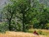 Trekking-Nepal-1040752