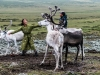 -Mongolia-2018-1030403