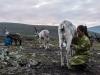 -Mongolia-2018-1030488