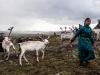 -Mongolia-2018-1030865