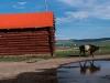 Mongolia20181040159