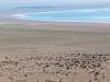 Mongolia20181040647