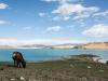 Mongolia201832713