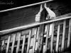 nepal_black-white31-jpg