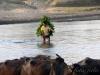 nepal_78