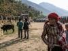 Trekk-Nepal-1040024