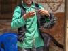 Trekking-Nepal-1040285