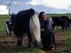 mg_8301_tibet