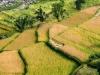 Trekking-Nepal-1050075