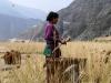 Trekking-Nepal-1050276