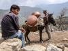 Trekking-Nepal-1050442