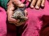 Trekk-Nepal-1020802