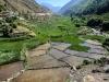 Trekk-Nepal-1030672