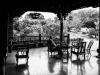 Yunnan-31000