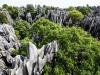Yunnan-30166